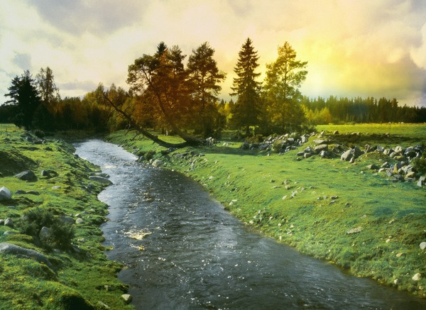 sunny+Finnish+landscape+7713